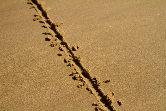 line-in-sand